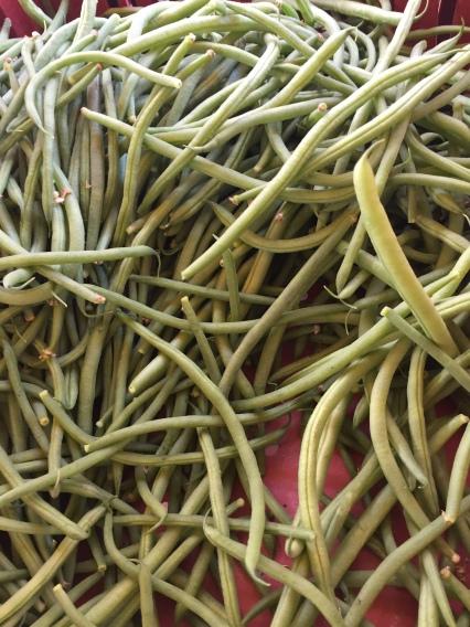 haricots verts et plats
